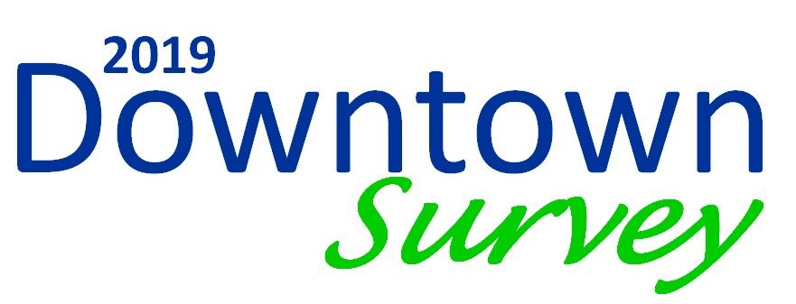 downtown survey logo